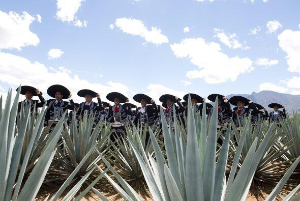 Los jugadores del Guadalajara dejaron a un lado su crisis, los shorts, l...