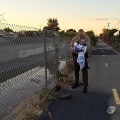 Un ayudante del Sheriff del condado de Los Ángeles rescata a un bebé