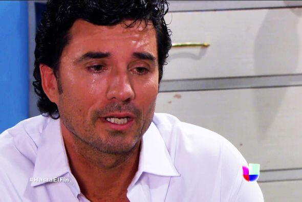 Ya no sufras Armando, nos duele verte tan triste. Aunque no seas el verd...