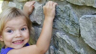 Alivia Viellieux iba a cumplir cuatro años el próximo 20 de marzo. Esta...