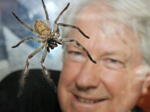 El australiano Nick Souef convivirá encerrado en una vitrina con...