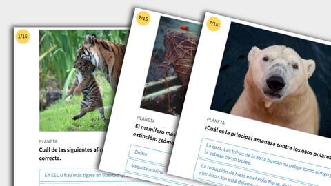 promo quiz extinción