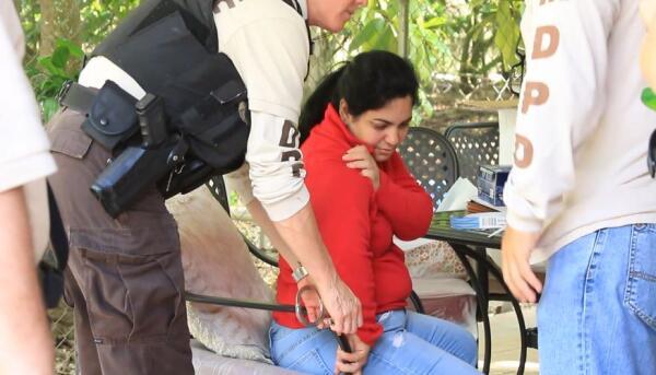 Arrestan a dos por matadero ilegal en Miami Dade