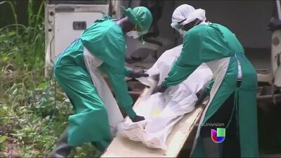 ¿Cuál es la mejor forma de combatir y prevenir el virus de ébola?