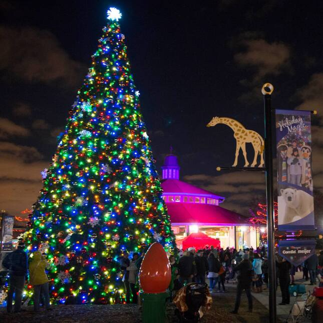 Festival de Luces del Brookfield Zoo