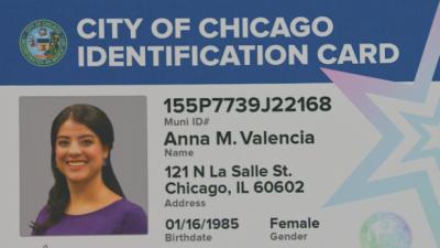 Así serán las tarjetas de identidad municipal que emitir&a...