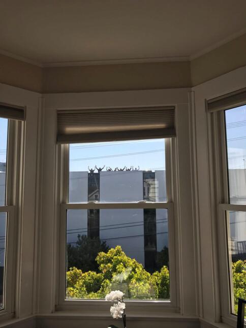 Tiroteo en San Francisco, California