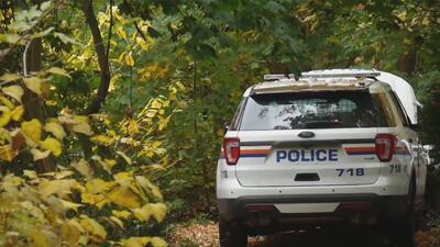 Buscan restos de posible víctima de la pandilla MS-13 en un área boscosa de Long Island