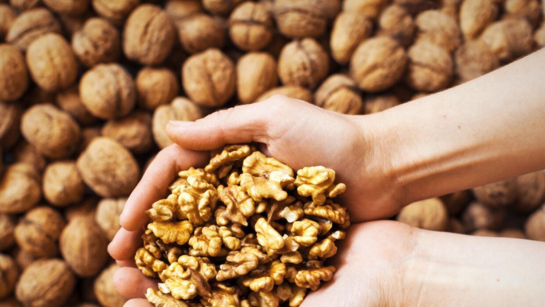 Las nueces son fuente de nutrientes básicos para verte y sentirte mejor.