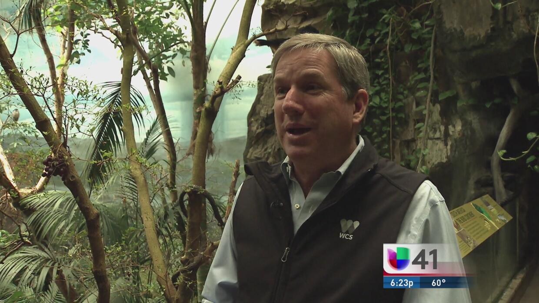 Cristian Samper, el hispano que vela por la vida silvestre en el mundo