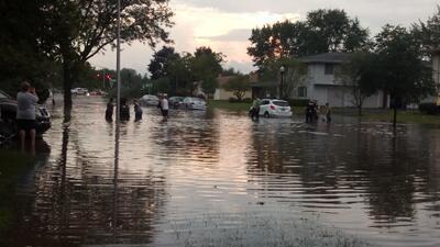 Árboles caídos, granizo e inundaciones dejan tormentas en Chicago