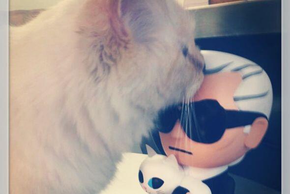Choupette no sólo es su mascota, sino que es fuente de inspiración para él.