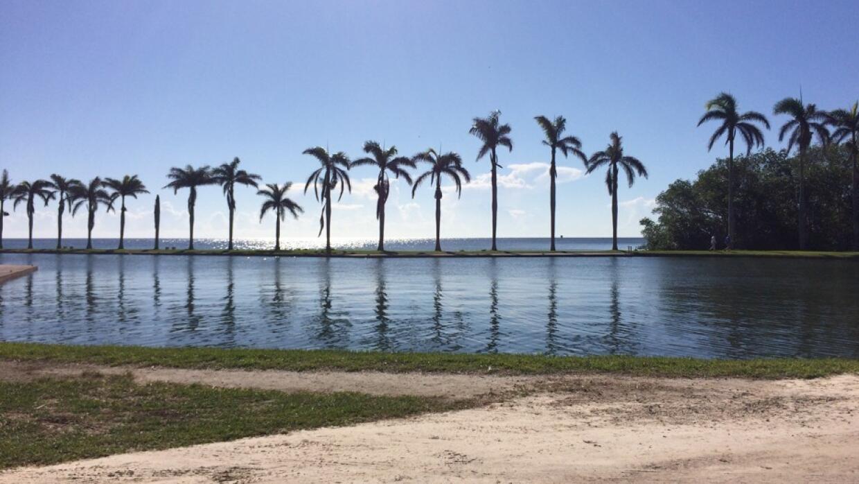 Con frecuencia la Bahía Biscayne se salpica en la tierra del Deering Est...