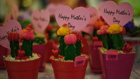 ¿Cuál es el mejor regalo para el Día de la Madre?