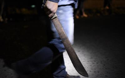 Presentan proyecto para prohibir la venta de machetes a menores de edad...