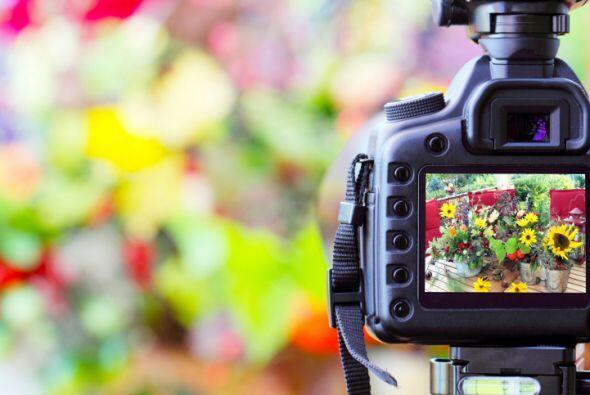 ¿Cuál elegir? Si puedes, elige una cámara con zoom óptico, ya que así lo...