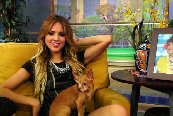 Eiza González fue la invitada especial de Despierta América.