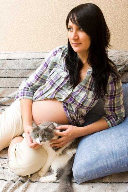 Muchas mujeres embarazadas al no querer adquirir toxoplasmosis, pensarán...