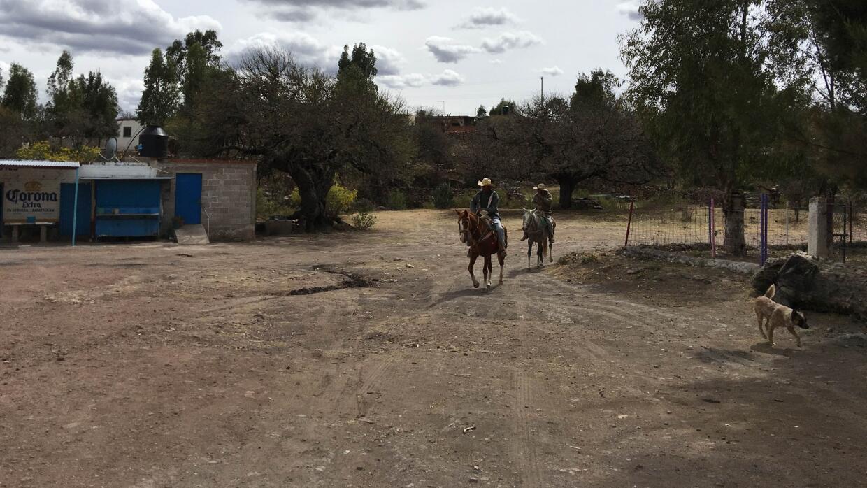 Dos jinetes transitan por un camino de tierra en Tuxtuac, Zacatecas.