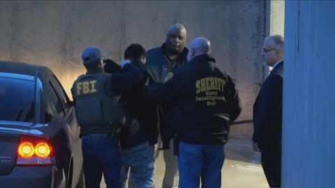 Autoridades federales y locales arrestan en el Condado de Suffolk a 13 s...