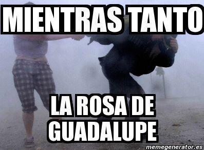 """""""Mientras tanto en la Rosa de Guadalupe""""."""