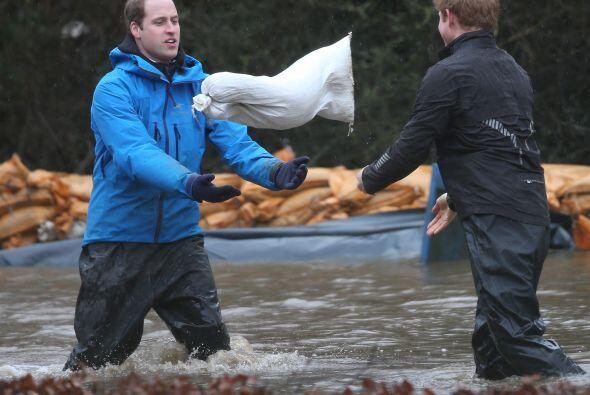 Harry le lanza con fuerza un saco a su hermano menor.