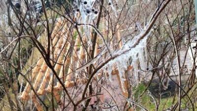 Más fotos de la #TormentaInvernal