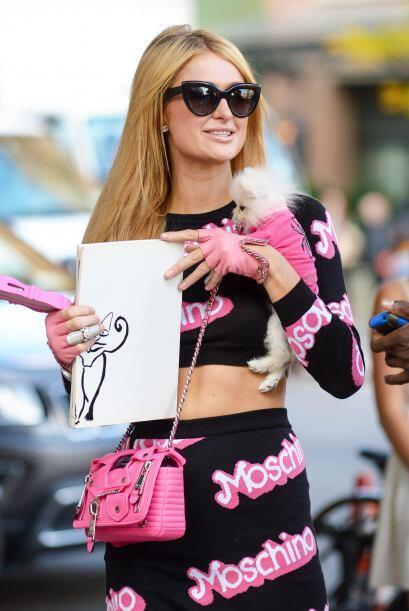 Paris Hilton perro