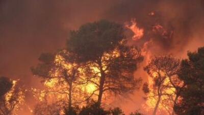 Las llamas destruyeron al menos una casa y han quemado más de 25 hectáre...