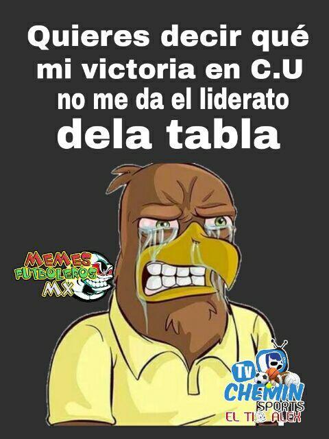 Pumas busca al agresor de Cecilio Domínguez 17309489_1275658352516857_91...