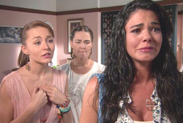 """""""Paloma"""" lloraba casi por todo."""