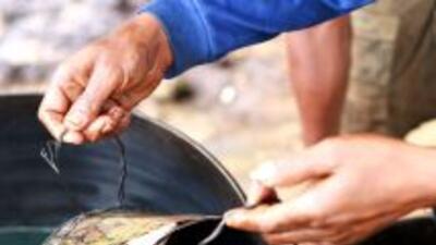 La paraestatal Petróleos Mexicanos (Pemex) asegura que va en aumento el...