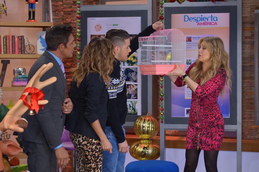 Thalía en Despierta América