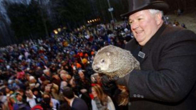 La marmota Punxsutawney Phil pronosticó que la primavera está por llegar...