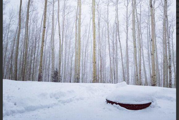Esta invernal postal la compartió, ¡TAMBIÉN DESDE AS...
