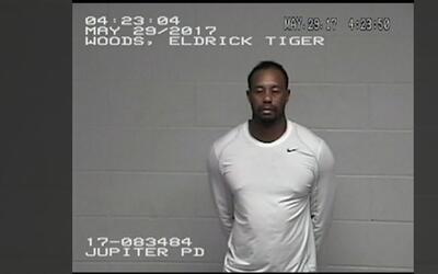 Nuevas imágenes de Tiger Woods en la comisaría luego de su arresto