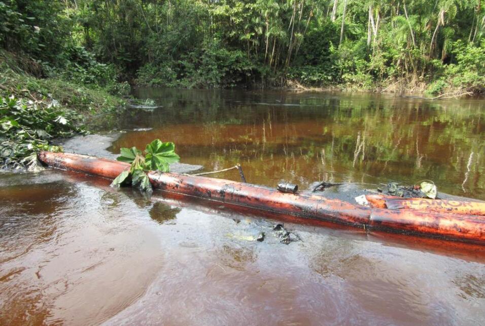 Pobladores de 42 comunidades de la amazonía peruana decidieron a inicios...