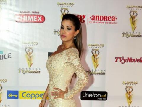 Ellas colmaron con su belleza la alfombra amarilla de los Premios TVyNov...