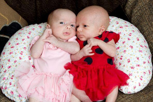 Hayley dio a luz a las pequeñas Avery y Darcy.