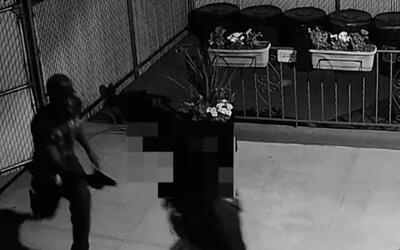 'Nueva York en un Minuto': autoridades buscan al sujeto señalado de roba...