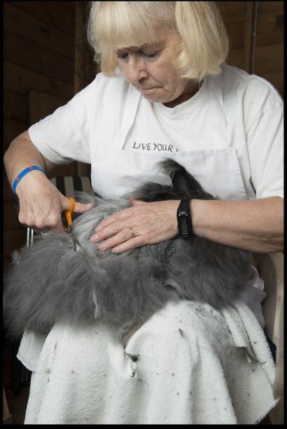 Con 67 años de edad, Sally se dedica a crear sus  propias prendas de lan...