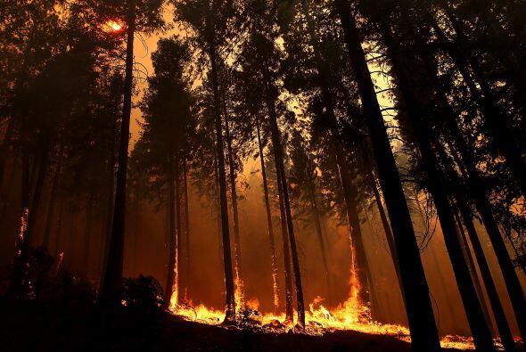 En Oregon, un incendio en Columbia Gorge, aproximadamente a 10 millas de...