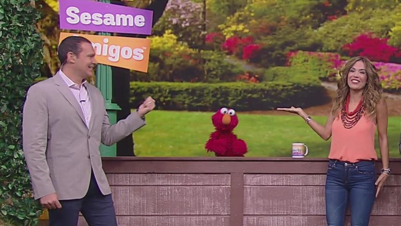 Sesame Amigos llegaron a Despierta América, pero ¿dónde está Rosita?