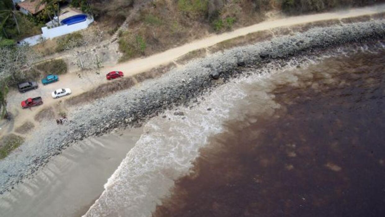 Esta es la marea roja más grande que se espera llegue a las costas de Fl...