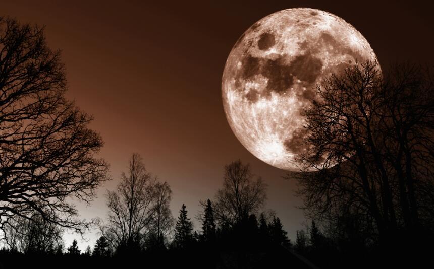 Llega la luna llena de noviembre, una fase cargada de amor y romance 2.jpg