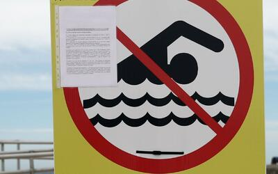 Aconsejan a bañistas no entrar en aguas de la Sunny Isles Beach por cont...
