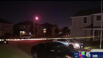 Una mujer intentó suicidarse luego de quitarle la vida a sus dos hijos.