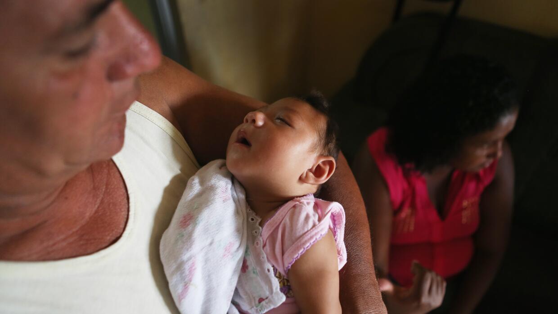 EL virus ha sido asociado a casos de microcefalia en recién nacidos.