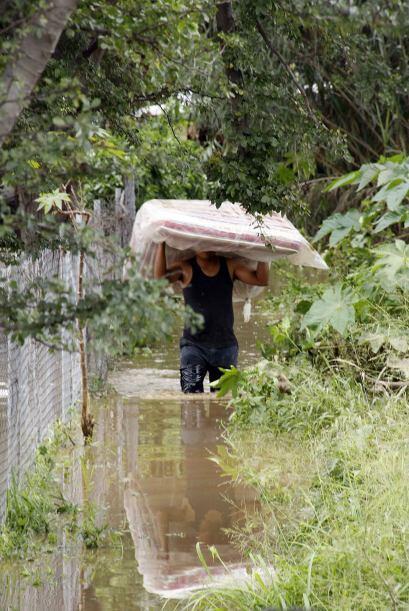 Pero sin duda alguna el estado más afectado ha sido Veracruz.