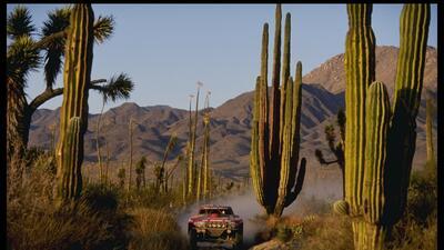 Lo que debes saber de la extrema y costosa carrera Baja 1000
